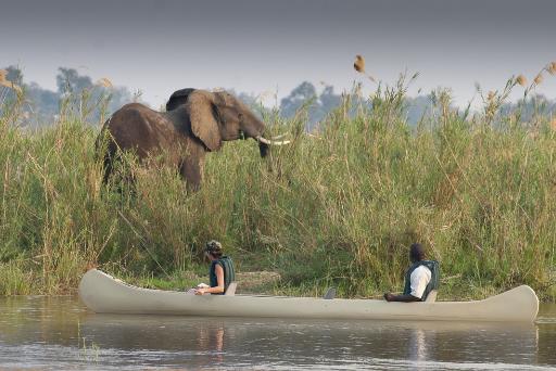 The Beauty of Lower Zambezi Exploration